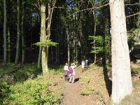 Ferschweiler-Plateau_040