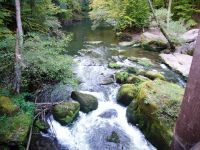 Ferschweiler-Plateau_145