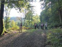 Ferschweiler-Plateau_160