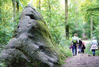 Ferschweiler-Plateau_175