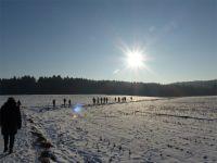 Winterwald_15