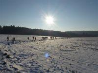 Winterwald_16